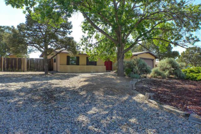 617 Meadow Lane, Los Alamos, NM 87544 (MLS #201902746) :: The Very Best of Santa Fe