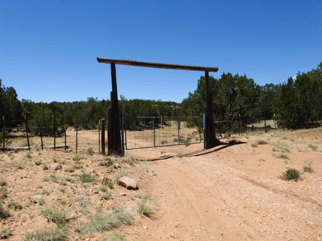 257 Cr B29a, Sena, NM 87560 (MLS #201902765) :: The Desmond Group