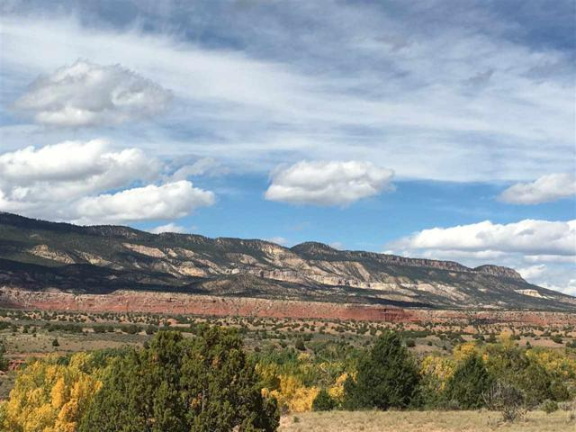 Lot 1B Los Cuervos, Youngsville, NM 87064 (MLS #201902769) :: The Desmond Group