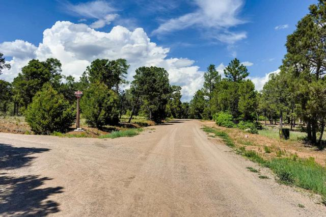 47 Silver Feather Tr, Pecos, NM 87552 (MLS #201902791) :: The Very Best of Santa Fe