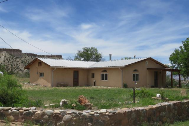 216 County Road 193, Abiquiu, NM 87516 (MLS #201902872) :: The Desmond Group