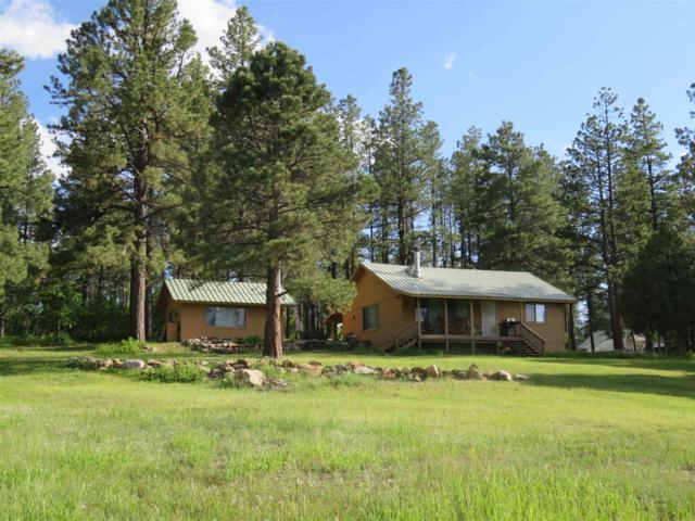 38 Private Drive 1787, Chama, NM 87520 (MLS #201902880) :: The Very Best of Santa Fe