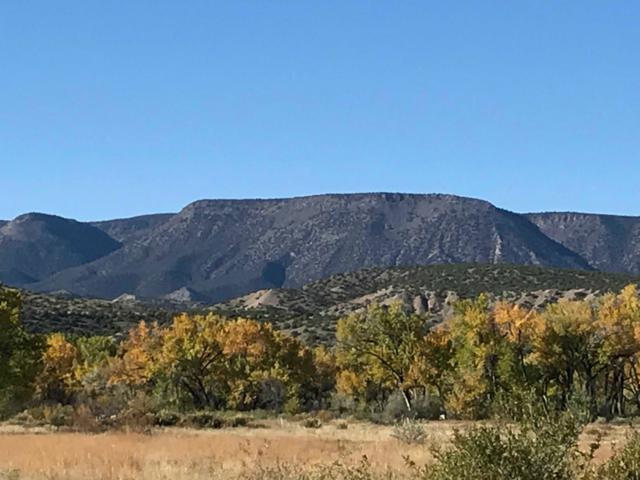 E-1, B-1 County Road 142, Abiquiu, NM 87510 (MLS #201902893) :: The Desmond Group