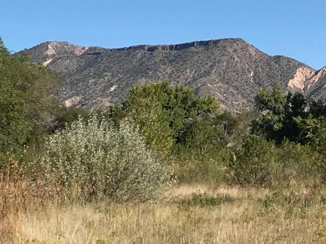 Lot A E-1, B-1 County Road 142 (13-14 Acres), Abiquiu, NM 87510 (MLS #201902894) :: The Desmond Group