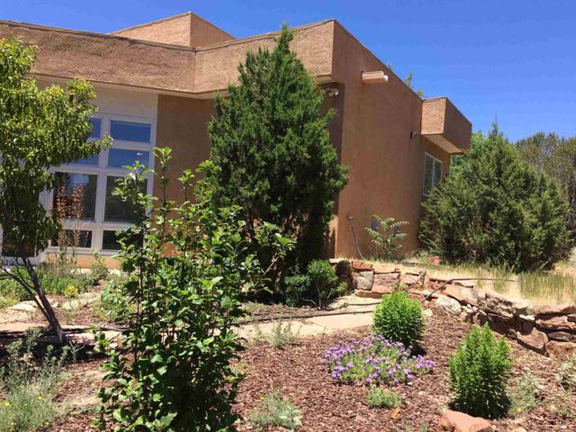 433 Luisa Lane, Santa Fe, NM 87505 (MLS #201902922) :: The Desmond Group