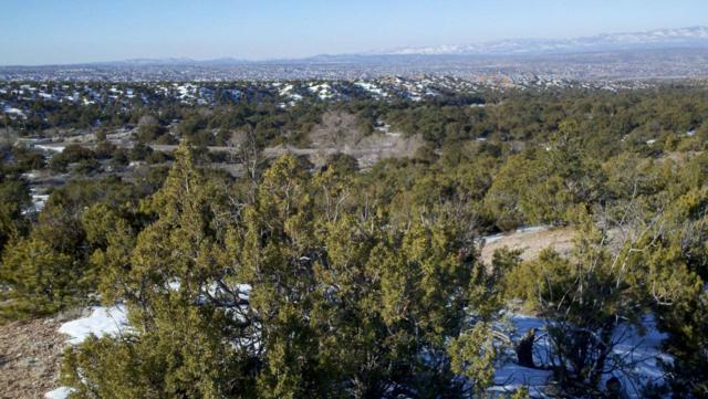 8 Calle Cielo, Santa Fe, NM 87506 (MLS #201902952) :: The Desmond Group