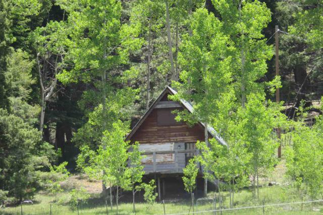 82 Forest Road 667, Truchas, NM 87578 (MLS #201902977) :: The Desmond Group