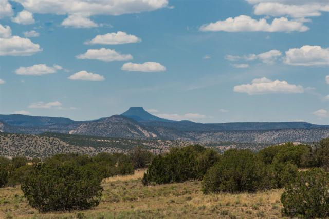 Indian Ridge County Road 142, Medanales, NM 87548 (MLS #201902980) :: The Desmond Hamilton Group