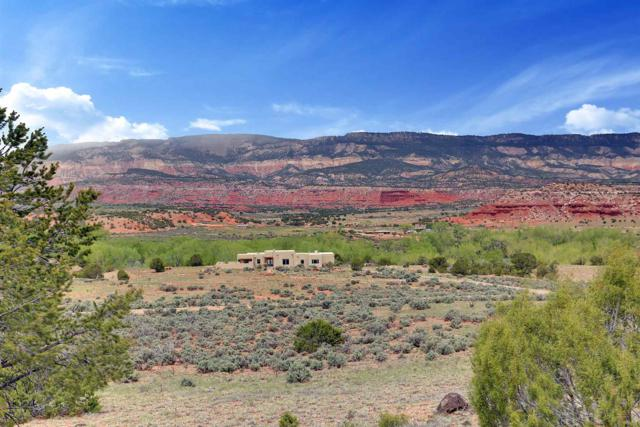 193 County Road 203, Youngsville, NM 87064 (MLS #201902988) :: The Desmond Group