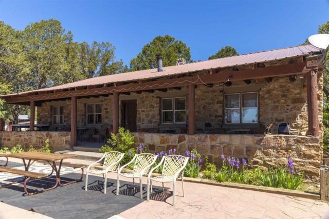 1409 State Rd 9 Stone House Lodge, Los Ojos, NM 87575 (MLS #201902997) :: The Very Best of Santa Fe