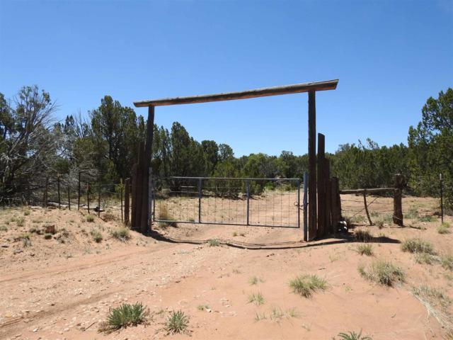 220 Cr B 29A, Villanueva, NM 87583 (MLS #201903019) :: The Desmond Group