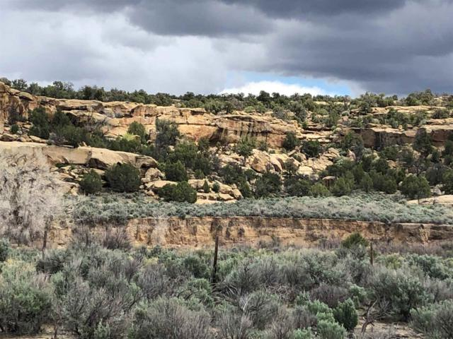 Portion Tract M N Highway 539/64, Aztec, NM 87528 (MLS #201903034) :: The Desmond Group