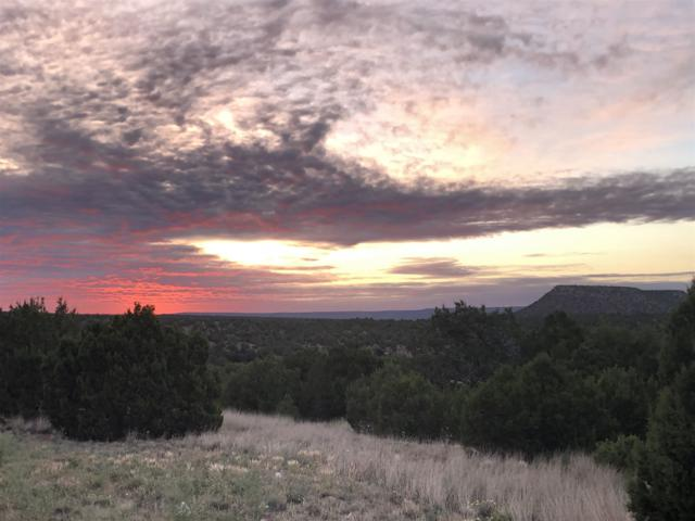 39 Pintada Loop Rd, Santa Rosa, NM 88435 (MLS #201903055) :: Stephanie Hamilton Real Estate