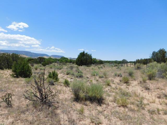 409 County Road 142, Medanales, NM 87548 (MLS #201903077) :: The Desmond Group