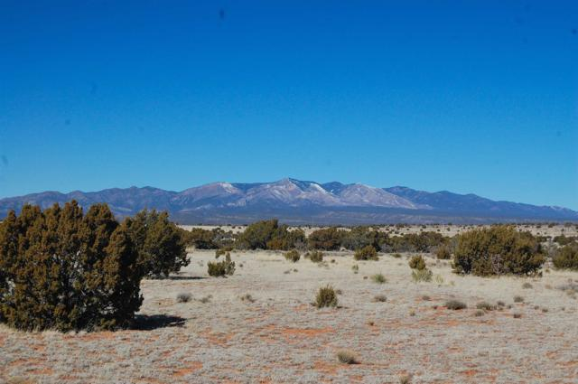 Abo Ranches Tract 19, Mountainair, NM 87036 (MLS #201903086) :: The Very Best of Santa Fe