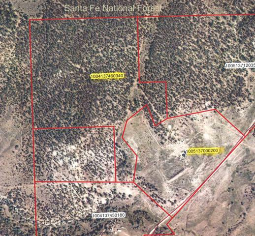 French Mesa Road, Gallina, NM 87017 (MLS #201903106) :: The Desmond Hamilton Group