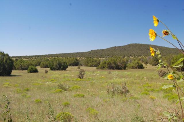 Hwy 337, Estancia, NM 87016 (MLS #201903129) :: The Very Best of Santa Fe