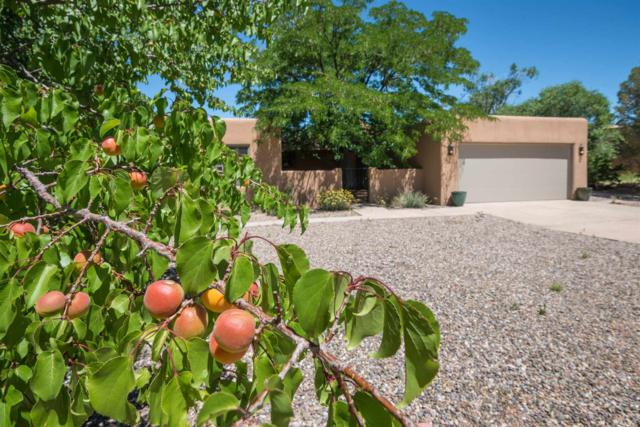 677 Callecita Jicarilla, Santa Fe, NM 87505 (MLS #201903153) :: The Very Best of Santa Fe