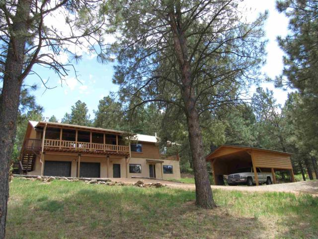 14 Cumbre Rd Pendaries Villa, Rociada, NM 87742 (MLS #201903155) :: The Desmond Group