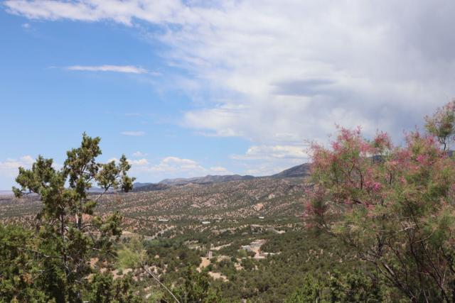 157 Brownell-Howland, Santa Fe, NM 87501 (MLS #201903173) :: The Desmond Group