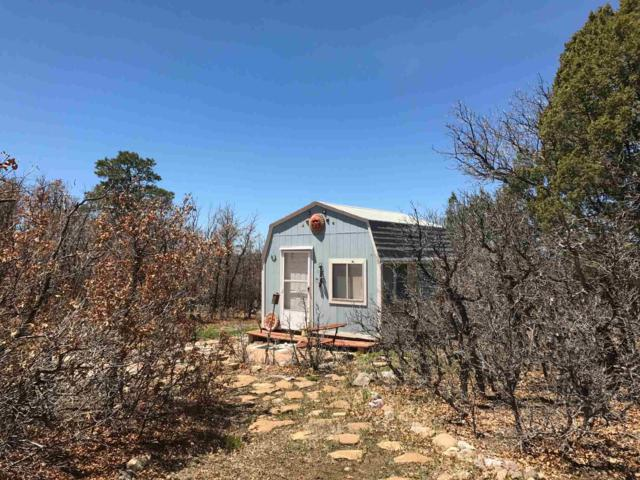Tract 133, Unit 6, Chama, NM 87520 (MLS #201903175) :: The Very Best of Santa Fe
