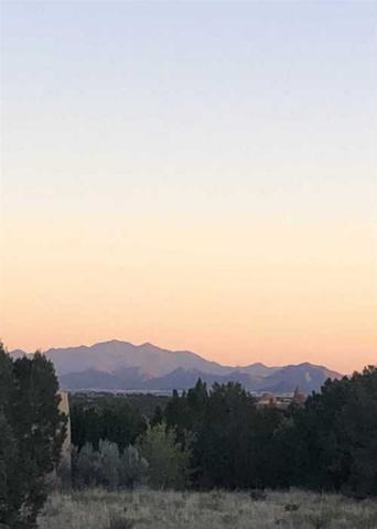 1 Luz Del Dia, Lot 840, Santa Fe, NM 87506 (MLS #201903209) :: The Desmond Group
