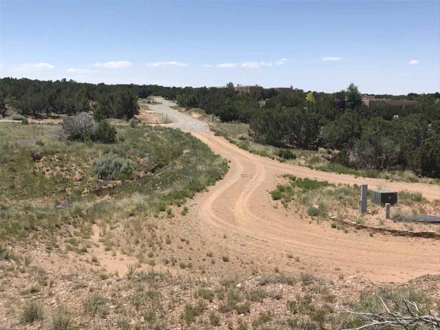 25 Calle Escopeta, Santa Fe, NM 87506 (MLS #201903233) :: The Desmond Hamilton Group