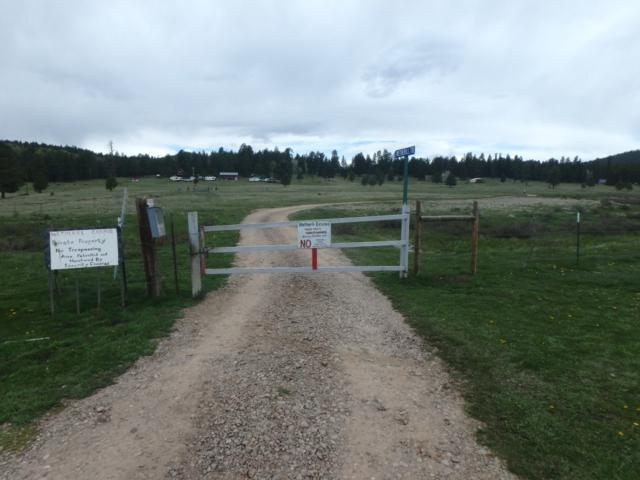 Tract 4 & A Wetherill Cabin Sites, Coyote, NM 87013 (MLS #201903241) :: The Desmond Hamilton Group