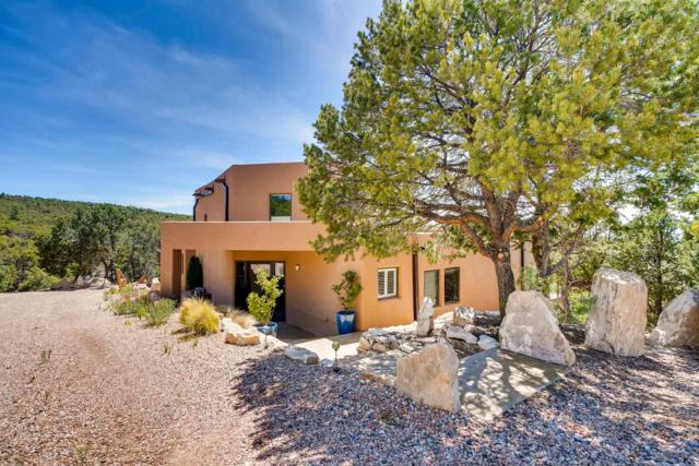 3300 Camino Lisa, Santa Fe, NM 87501 (MLS #201903259) :: The Desmond Group