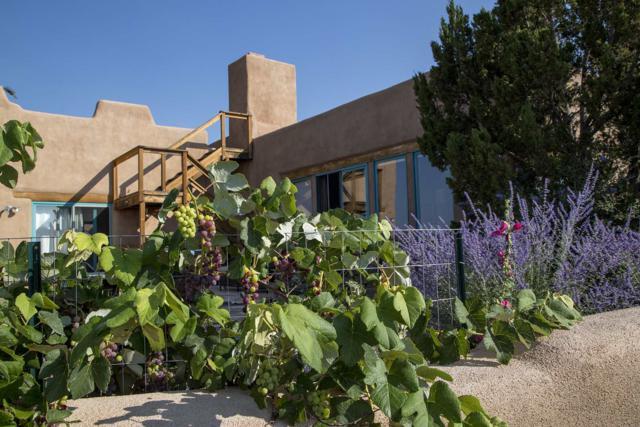 72A Pd 1685, El Rito, NM 87530 (MLS #201903263) :: The Very Best of Santa Fe