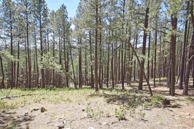 511 Elk Trail, Jemez Springs, NM 87025 (MLS #201903292) :: The Desmond Group