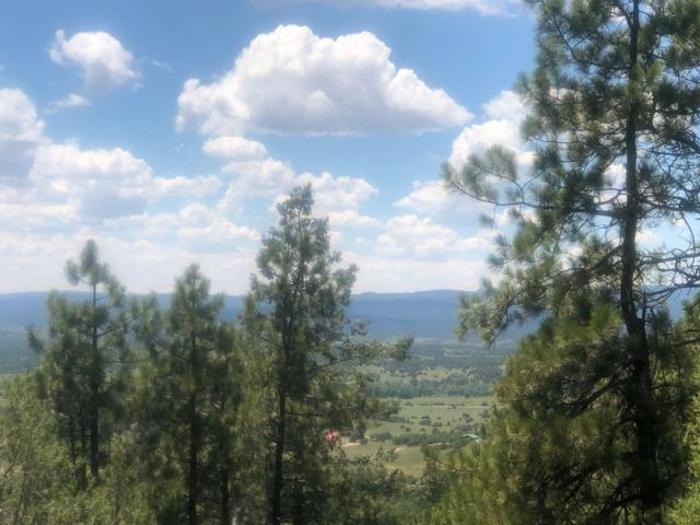 Overlook Lane, Ponderosa, Chama, NM 87520 (MLS #201903303) :: The Very Best of Santa Fe