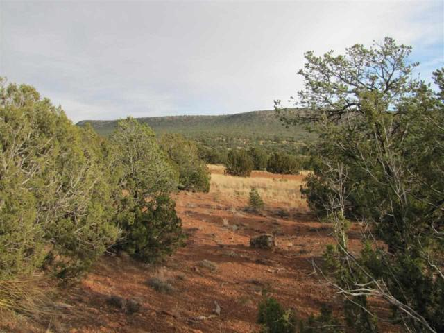 Tracts 6A1&6A2 Smcr B31a Gonzales Ranch, Ribera, NM 87560 (MLS #201903316) :: The Very Best of Santa Fe
