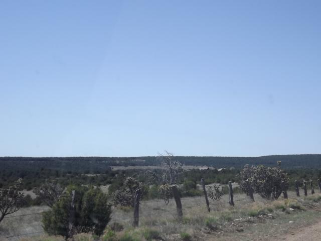 66 Gallegos Road, Tijeras, NM 87059 (MLS #201903327) :: The Very Best of Santa Fe