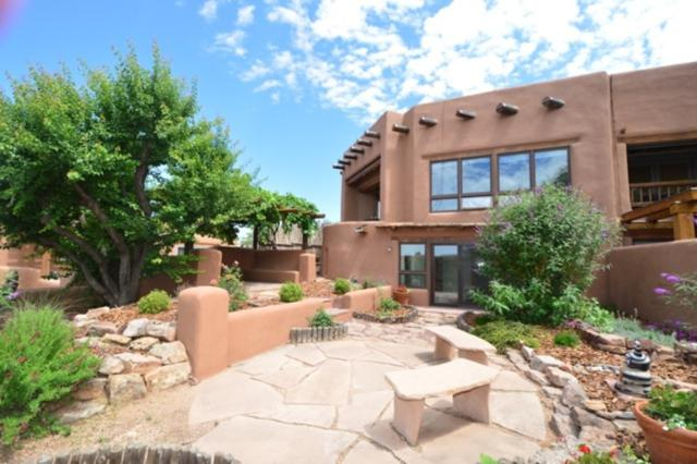 320 Kearney Ave. #25, Santa Fe, NM 87501 (MLS #201903346) :: The Desmond Group