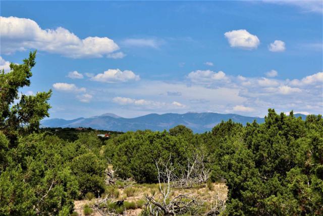 176 Camino Tres Arroyos, Santa Fe, NM 87507 (MLS #201903417) :: The Desmond Group