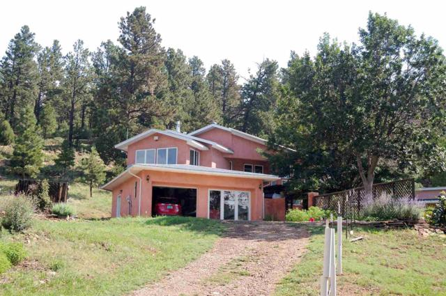 254 State Highway 266, Sapello, New Mexico 254 State Highw, Sapello, NM 87745 (MLS #201903421) :: The Desmond Group
