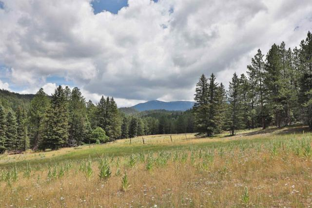 TBD Forest Road 667, Truchas, NM 87578 (MLS #201903434) :: The Desmond Group