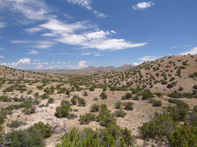 0 Mesa View Road, Madrid, NM 87010 (MLS #201903467) :: The Desmond Group