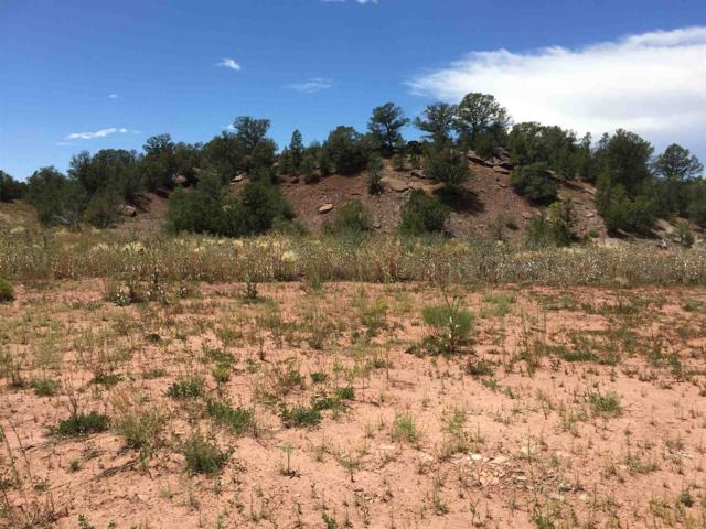 Lot 6 Mmh Subdivision Sr 50, Pecos, NM 87552 (MLS #201903489) :: Berkshire Hathaway HomeServices Santa Fe Real Estate