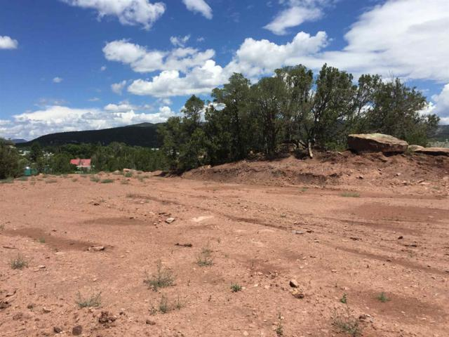 Lot 7 Mmh Subdivision Sr 50, Pecos, NM 87552 (MLS #201903490) :: Berkshire Hathaway HomeServices Santa Fe Real Estate