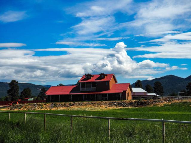 1572 Capulin Lane Rio Chamita Est, Chama, NM 87520 (MLS #201903520) :: The Very Best of Santa Fe
