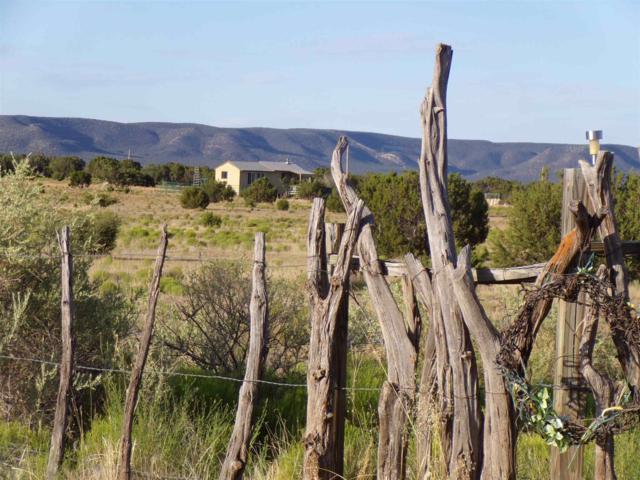 110 Cottage Loop, Mountainair, NM 87036 (MLS #201903540) :: The Very Best of Santa Fe