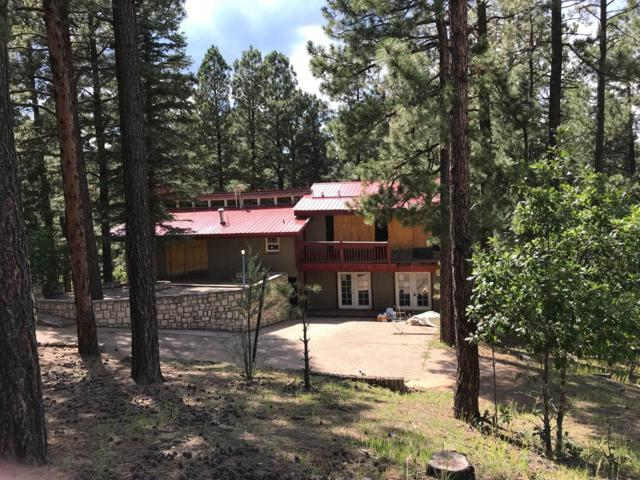 14 Altavista Road, Rociada, NM 87742 (MLS #201903543) :: The Desmond Group