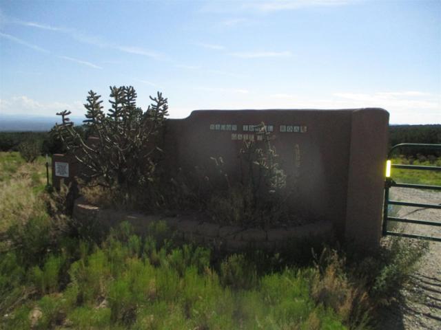 208 Wagon Trail, Cerrillos, NM 87010 (MLS #201903561) :: The Desmond Group