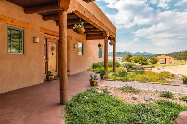 310 County Road A0 11, Mora, NM 87732 (MLS #201903581) :: The Very Best of Santa Fe