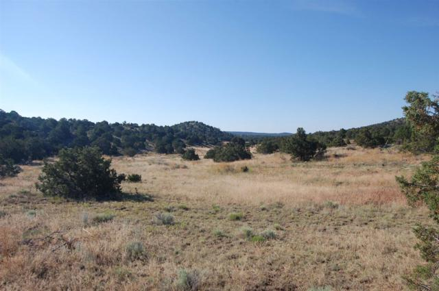 Camino Valle, Canoncito, NM 87508 (MLS #201903610) :: The Very Best of Santa Fe