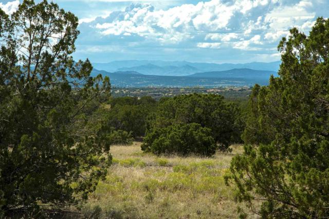 16 Camino Los Suenos, Santa Fe, NM 87506 (MLS #201903698) :: The Desmond Hamilton Group