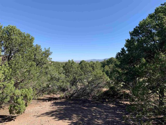 2954 Broken Sherd Trail-Lot 143, Santa Fe, NM 87506 (MLS #201903761) :: The Desmond Group