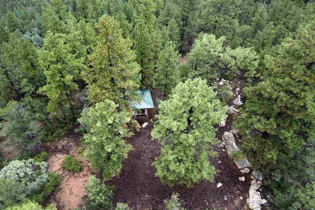 Cr B44d, Pecos, NM 87552 (MLS #201904185) :: The Very Best of Santa Fe